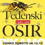 Tedenski osir - Sheety 2016 - 31.12.2016