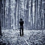 Alone in Forest