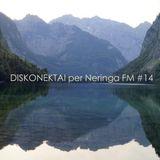 DISKONEKTAI per Neringa FM #14: Mindas