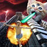 Trap Cat Vol. 3 (300 Followers & For Alicia