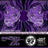 DJ EEZE 'N FLO : Under the Stars : Mix Session Volume 1 : Taste Da Flavour DJ Collective