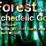 E/pic Forest (Mitschnitt 3/14) feat. Infra