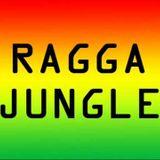 My VA - Ragga Jungle Anthems #01