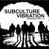 ॐTerraTekॐ @ subculture vibration - kili bln - 20-05-2017