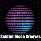 Soulful Disco Grooves Vol 2