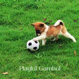 057 - Playful Gambol
