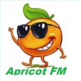 HOT MIX  Apricot fm  Radio show - Dickie Deejay
