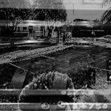 Documental Sonoro: La Sociedad del Tren
