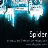 Spider's Mash-Up Mix 2013