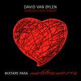 Mixtape Maldeamores Club (DJ Mix by David Van Bylen)