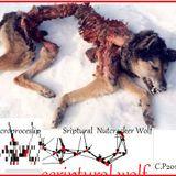 Scriptural Wolf Nutracker Except