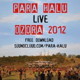 Para Halu - Live at Ozora 2012