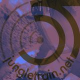 DJ Problem Child - Live On Jungletrain.net 23.08.2017 (2 Hour 93-94 Selection)