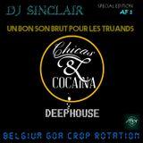 DJ SINCLAIR AF1 --UN BON SON BRUTE POUR LES TRUANDS-- Finest tech deep after clubbing selection
