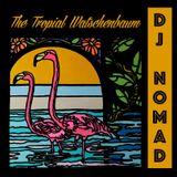 Dj Nomad - The tropical Watschenbaum mix