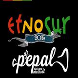Sesión Etnosur 2015 - Dj Pepal - Etnochill 2015