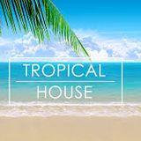 Summer 2016 Tropical House Music|Deep House|Indie Dance DJ Chico Alves