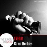 Sunday Eve Guest Gavin Herlihy