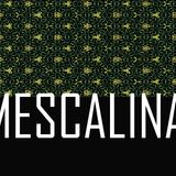 Mescalina #1.3