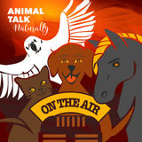 Essential Oils & Animals, Pt2 - Show #604