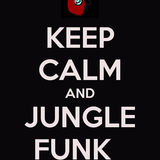 Dj Hennessy Pres Jungle funk 002 Part 2
