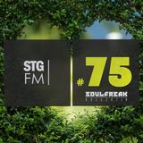 Stg.fm #75 - Deep & House 14 mixed by Fricky (Soulfreak Kollektiv)