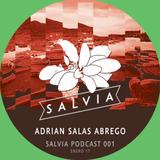 Adrian Salas Abrego - SALVIA Podcast 001 (01.17)