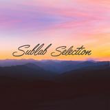Sublab Selection 011 | Chillstep & Future Garage Mix