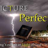 Picture Perfect - Audio