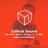 Rudeboy - Critical Sound