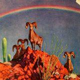 Rainbow Lollipop/New Music Machine 3.2.17