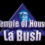 LA BUSH A (retro)