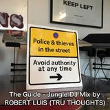 Guide Jungle DJ Mix by Robert Luis Tru Thoughts