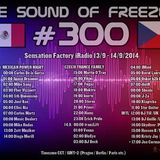 DJ BECK - THE SOUND OF FREEZER 300