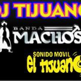 BANDA MACHOS MIX DJ TIJUANO