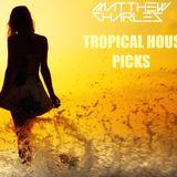 Tropical House Picks by DJ Matthew Charles Vol. 1