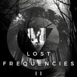 Lost Frequencies II