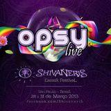 Opsy live@Shivaneris Easter Festival 2013 Sao Paulo-Brazil
