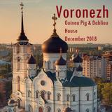Voronezh by Guinea Pig & Dabliou - December 2018