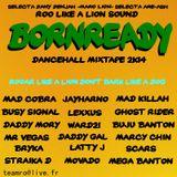 ROo Like a LION DANCEHALL MIX 2014