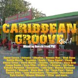 Caribbean Groove vol.1 mixed by Hocchi from PBC [Feb 2014]