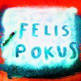 Felis Catus & Nikus Pokus present: NIKUS CATUS promo 2013