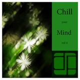 Chill Your Mind Vol. 4