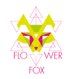 Saturday Night Mix (Dj Flower Fox)