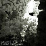 #404: Weldroid / Turgeoncellsil