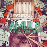Wellnotes Live @ AMULA Festival 2015 -
