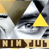 NiN.dUb.InTheSky