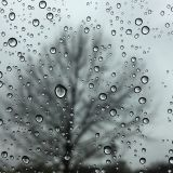 Beautiful melodies for a rainy sunday