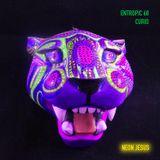 """Entropic 68 - """"Curio"""""""