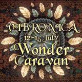 Max Ethereals - Vibronica Festival 2018. Wonder Caravan. 13072018